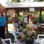 A Mezőzombori Általános Iskola részt vett a Szerencsi Tankerületi Központ által szervezett művészeti fesztiválon, főzőversenyen